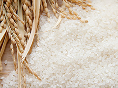 Rice-Japanese