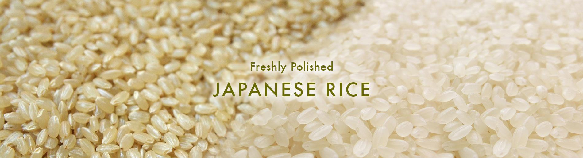 Freshly Polished Japanese rice